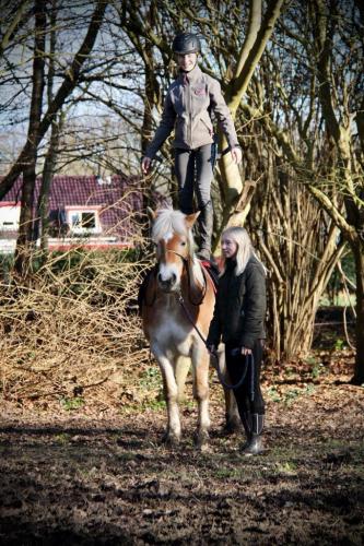 Staan op het paard, durf jij het aan?